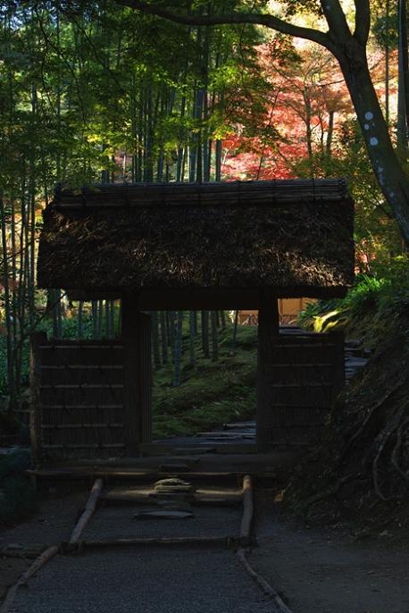 「西山荘」 色彩を求めて・・・<2> 2008年11月30日_e0143883_15462727.jpg