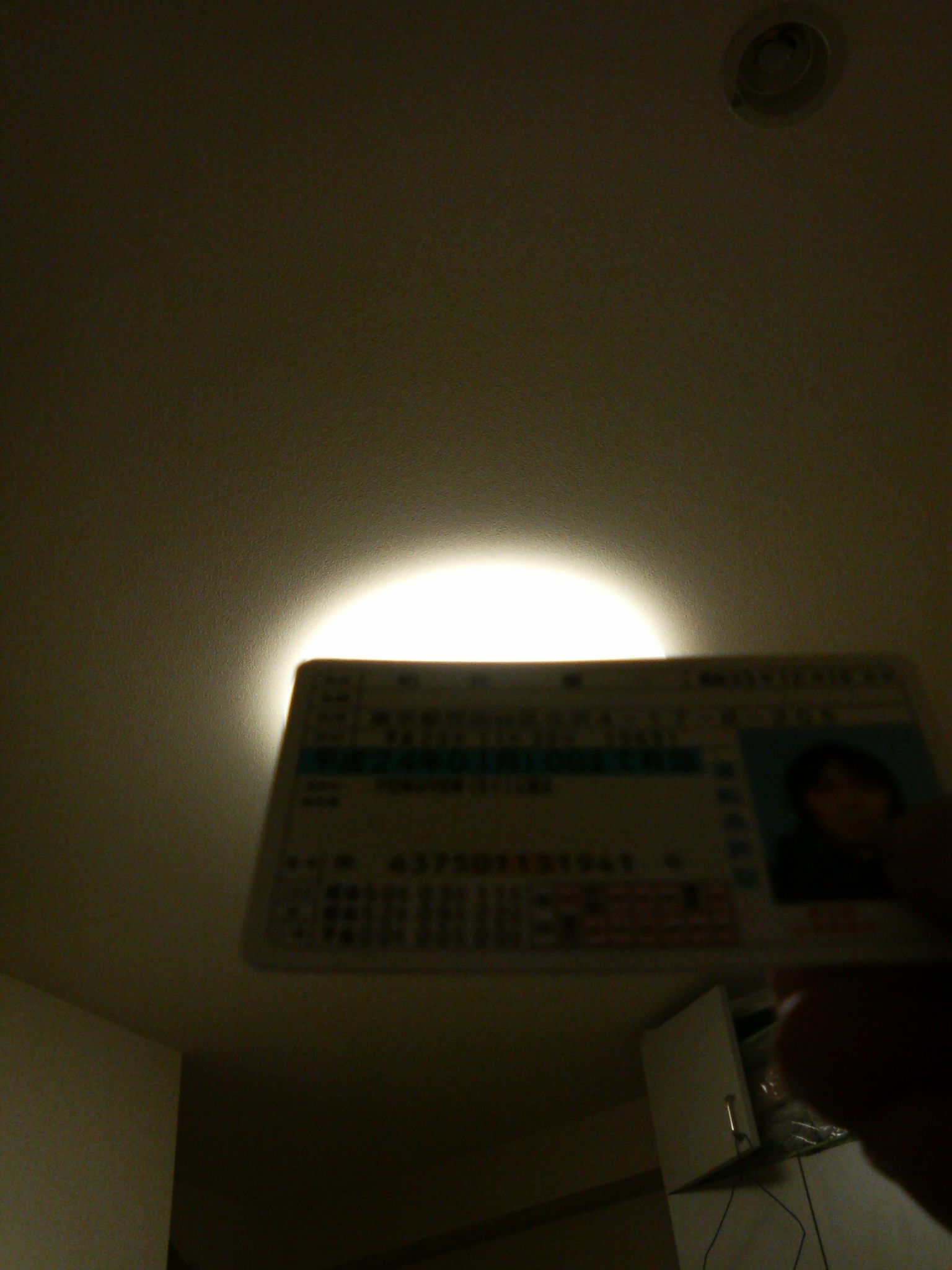 運転免許証更新_a0075684_2165938.jpg