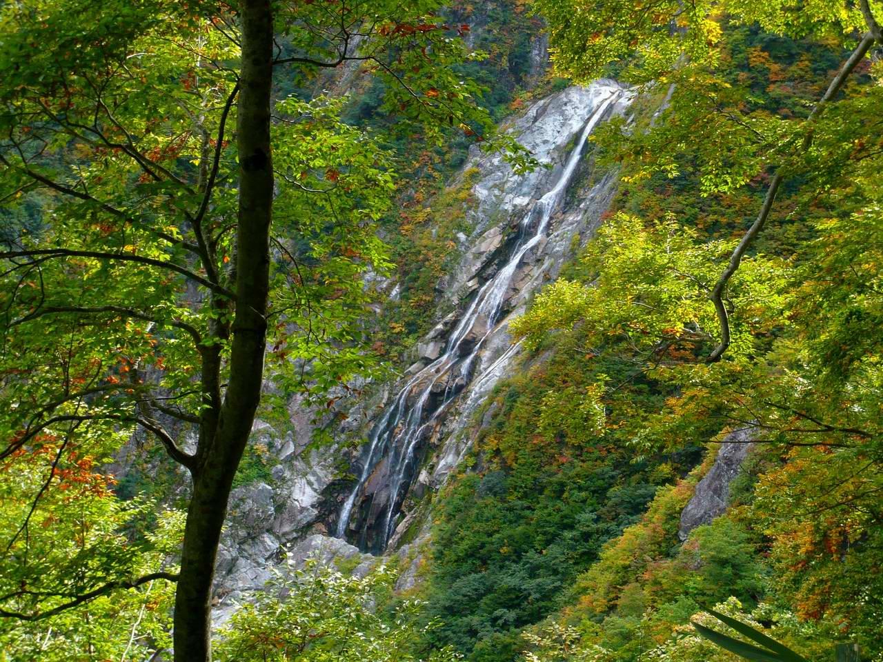 池の平・仙人池から阿曽原温泉へ (3日目)_e0110500_1332238.jpg