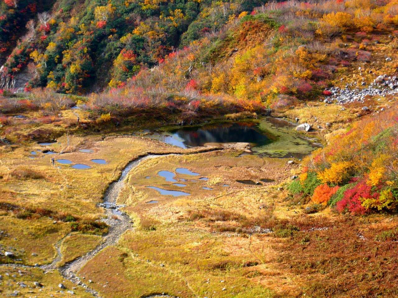 池の平・仙人池から阿曽原温泉へ (3日目)_e0110500_7585584.jpg
