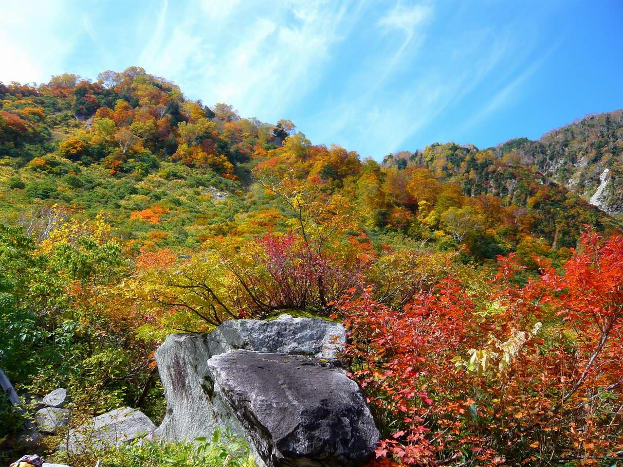 池の平・仙人池から阿曽原温泉へ (3日目)_e0110500_9422437.jpg