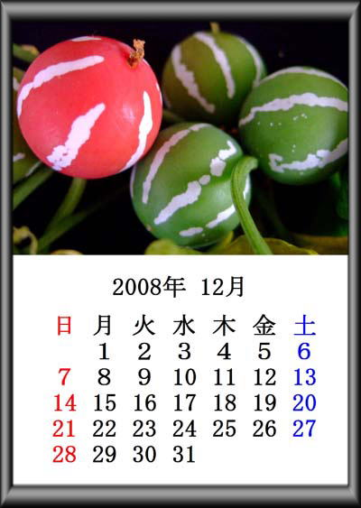 f0147025_1846987.jpg