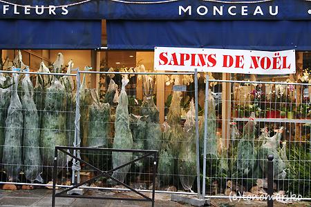 パリ、もみの木だらけ_c0024345_23161720.jpg