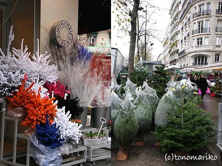 パリ、もみの木だらけ_c0024345_23164523.jpg