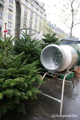 パリ、もみの木だらけ_c0024345_2317424.jpg