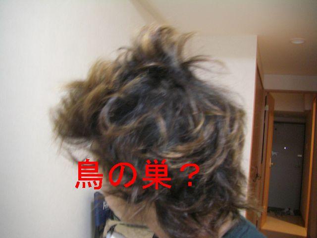 f0053952_1428140.jpg