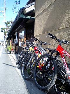 奈良(風の旅行社)2_c0047856_203095.jpg