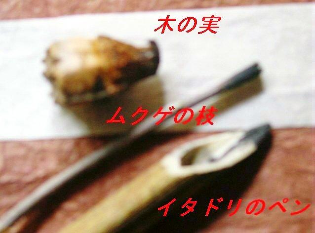 f0179357_11272691.jpg