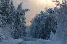 Nidaの冬_c0166866_23591314.jpg