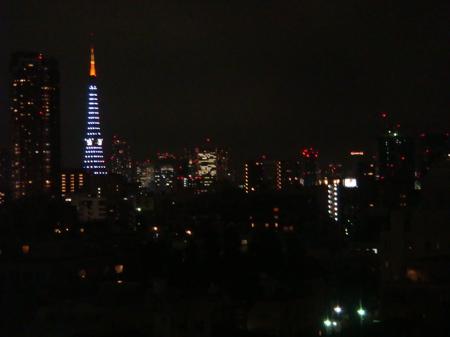 2008.12.1(その3)シマシマ東京タワー_a0083571_21554921.jpg