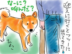 伊佐蔵のお泊まり_b0057675_15474657.jpg