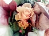 秋色のバラ_b0111306_8453229.jpg