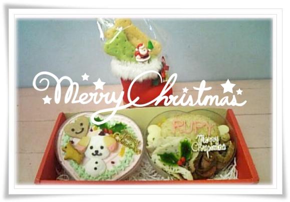 クリスマスケーキ ご予約受付中☆_b0084929_18435422.jpg