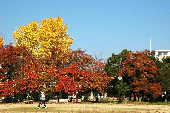 街なかの小公園にて_b0093754_0204374.jpg
