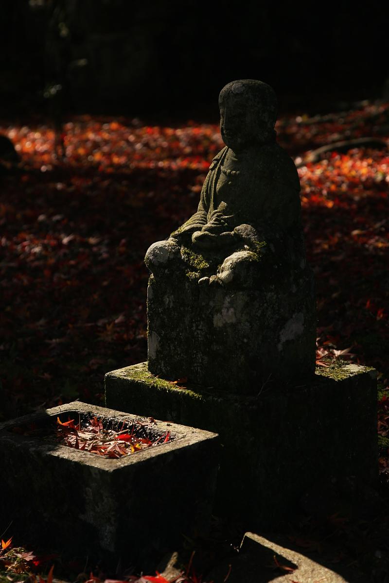 タン、タン、丹波の紅葉オフ 円通寺 2_f0021869_2305243.jpg