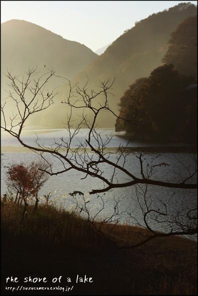 静かな湖畔_f0100215_1155043.jpg