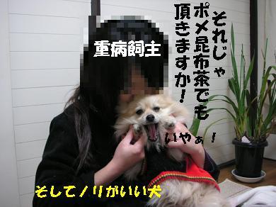 c0179136_1354316.jpg