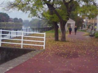 博多の朝は心が揺れる_c0132052_1038888.jpg