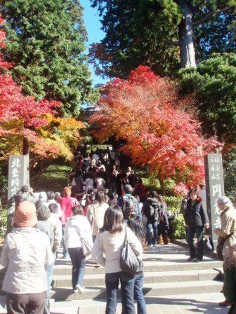 そして、鎌倉(写真集バージョン)_c0119259_0424152.jpg