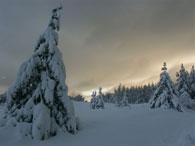 Nidaの冬_c0166866_11215355.jpg