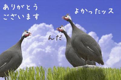 b0159868_2011232.jpg