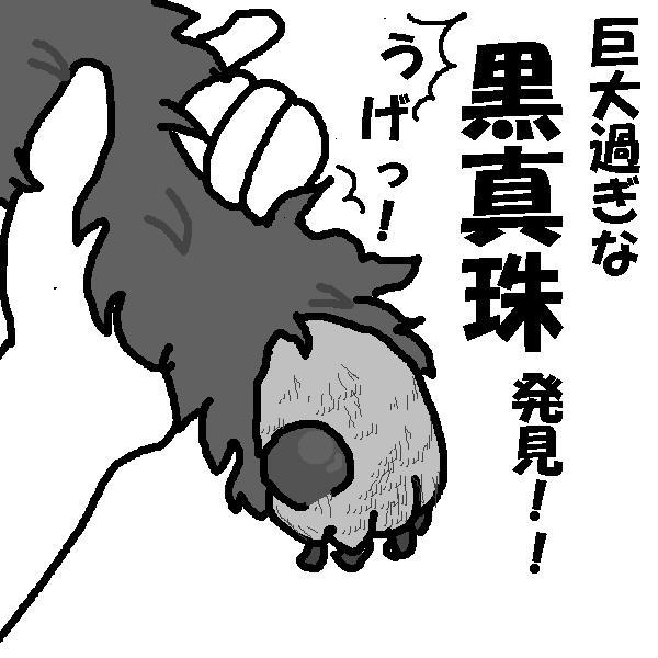 f0096569_150619.jpg
