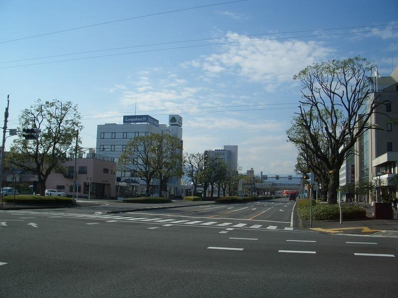 青葉通りのクスノキが_f0141310_23163387.jpg