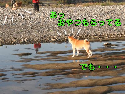 c0166018_15193453.jpg