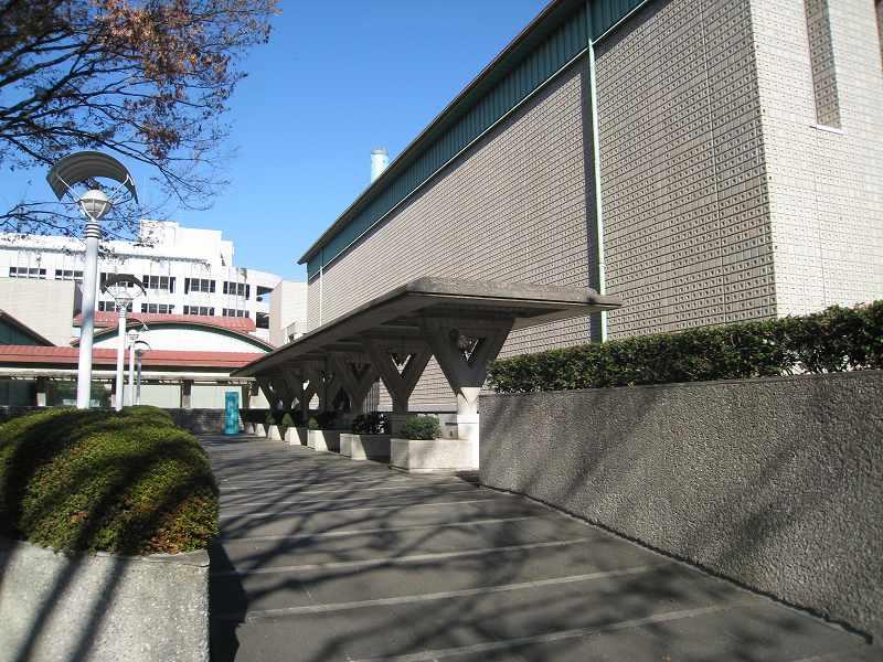 ケヤキも紅葉、屋根まで紅葉?世田谷美術館の冬支度_e0010418_17304297.jpg