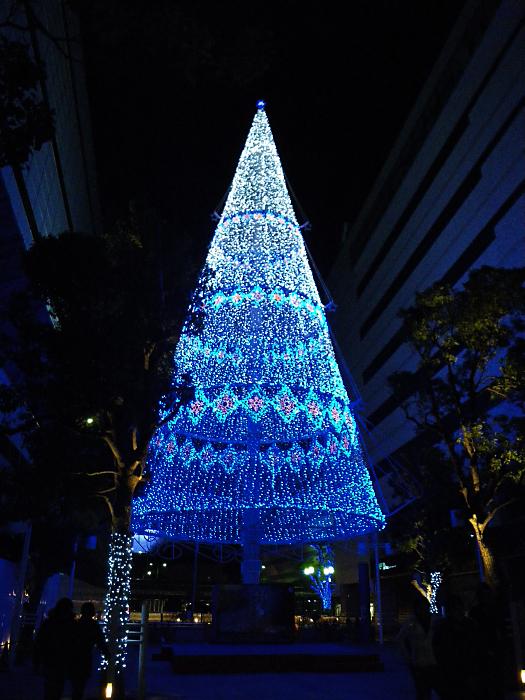 光のツリー_c0120834_838829.jpg