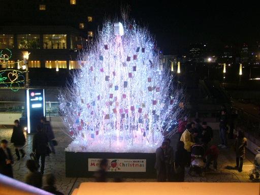 Merry スマイル Christmas_f0180880_301583.jpg