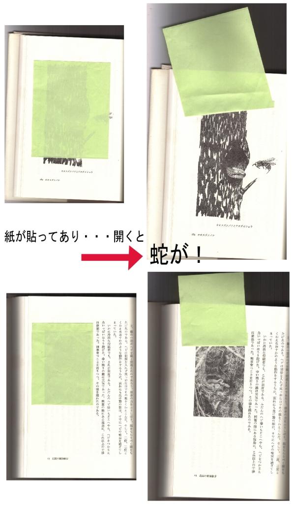 絵心本11 見たくない絵_f0035084_19352612.jpg