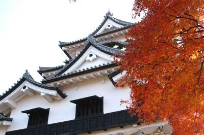 2008初冬の彦根城_c0093196_10242100.jpg