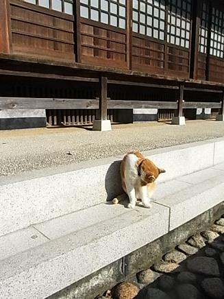 鎌倉散歩4_b0105897_228310.jpg