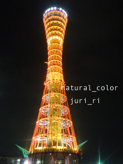 c0063808_17193.jpg
