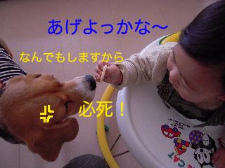 b0104420_10461069.jpg