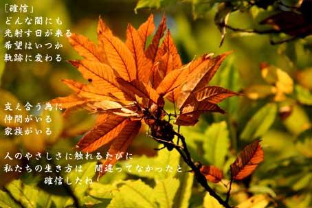 b0044724_19112591.jpg