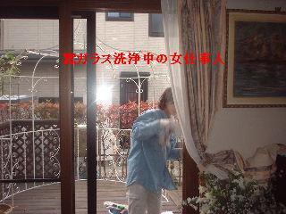 f0031037_2029216.jpg