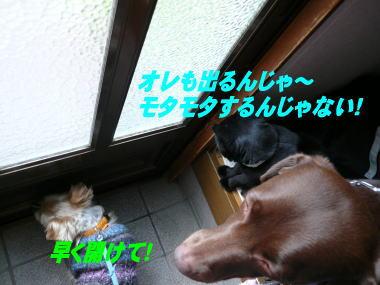 d0013645_120790.jpg