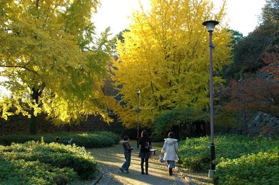 和歌山城公園にて_b0093754_0153918.jpg