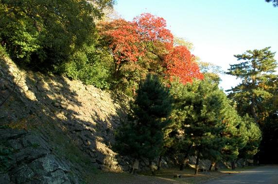 和歌山城公園にて_b0093754_2341876.jpg