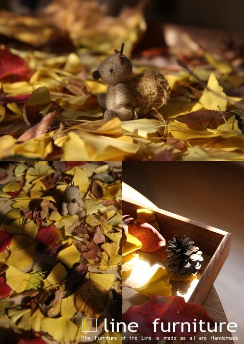 秋の色_e0155066_1411546.jpg