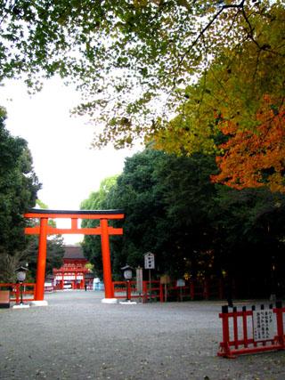 紅葉の下鴨神社と「糺の森」_e0048413_214762.jpg