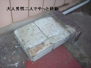 f0031037_1937467.jpg