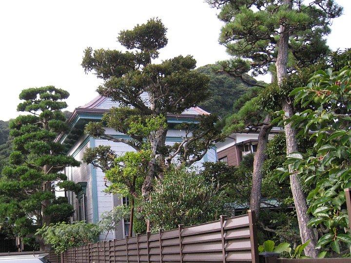 鎌倉の加賀谷邸_c0112559_1015566.jpg