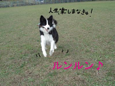f0132070_065175.jpg