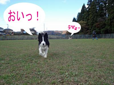 f0132070_072768.jpg