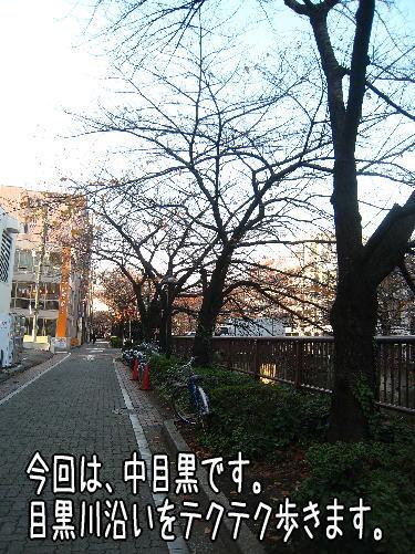 f0187974_22512515.jpg