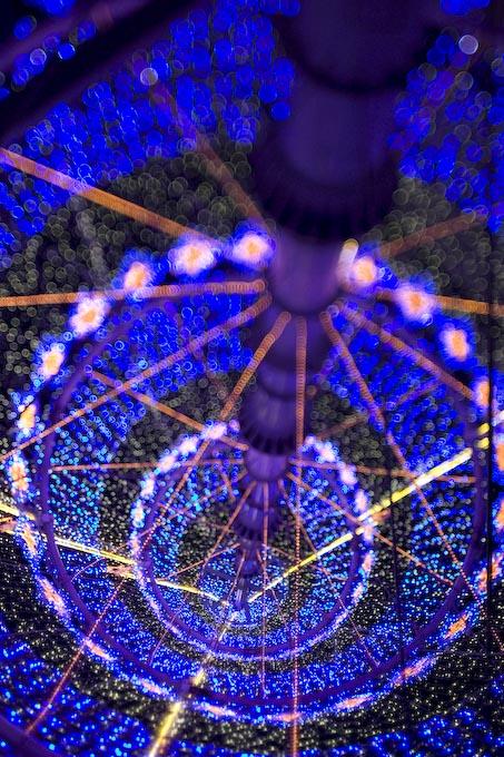 浜松の夜_c0150383_10441129.jpg
