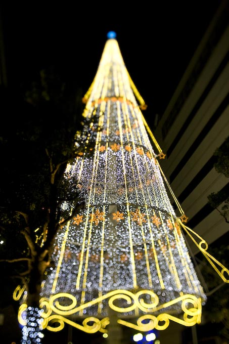 浜松の夜_c0150383_1104738.jpg